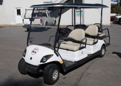 golf-cart-rental-3